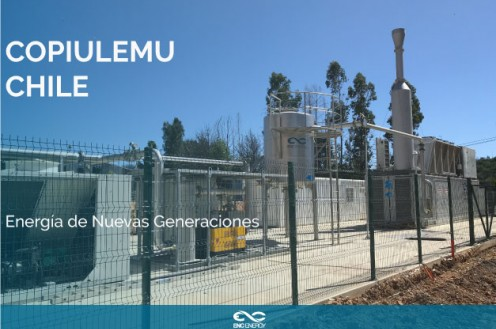 Our plant in Copiulemu, Chile, is in operation